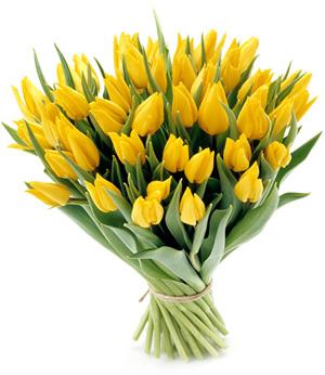 [Obrazek: kwiaty-na-imieniny.jpg]