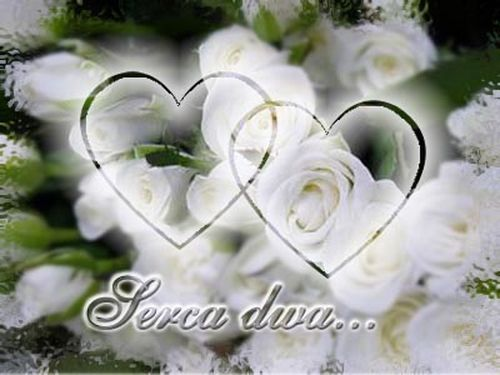 http://www.fantastyczny-prezent.pl/images/rocznica-slubu.jpg